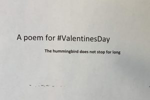 #ValentinesDay, Valentines Day, poem, Teh hummingbird does not stop for long, JP Fallavollita
